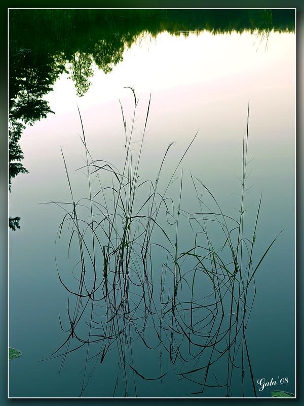 "фото ""Утреннее зеркало"" метки: пейзаж, вода, лето"