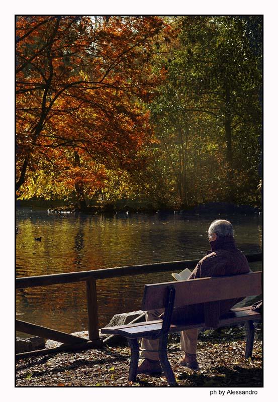 """photo """"park bench"""" tags: landscape,"""