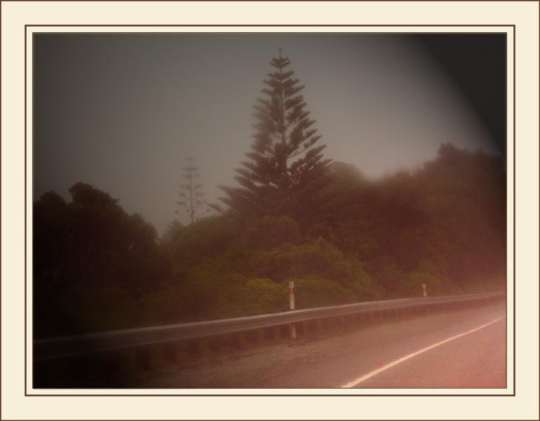 "photo ""Misty Highway"" tags: landscape,"