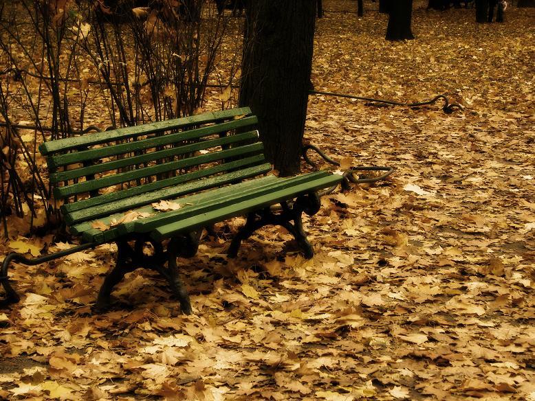 """фото """"в старом парке"""" метки: пейзаж, ретро, осень"""