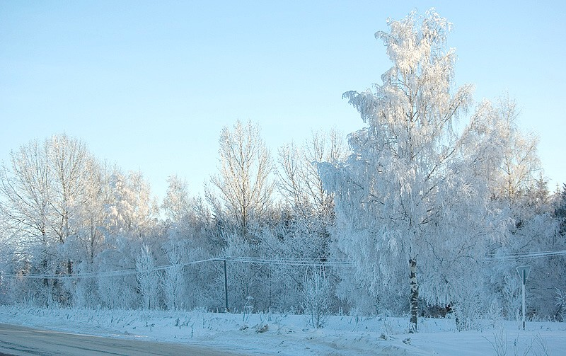 "photo ""Ice, roadside ..."" tags: landscape, winter"