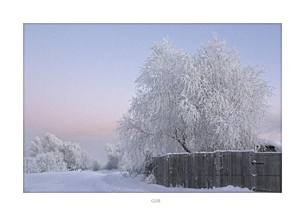 """фото """"Морозный день"""" метки: пейзаж, зима"""