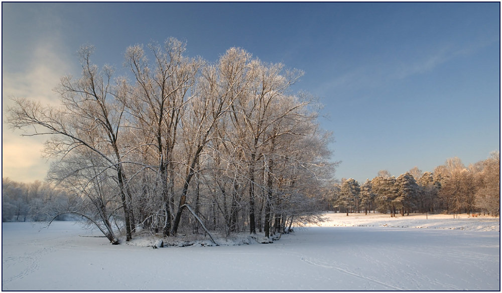 "photo ""Island"" tags: landscape, forest, winter"