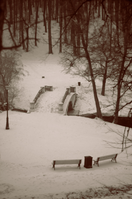 "photo ""#0428"" tags: landscape, winter"