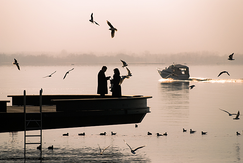 "photo ""Will you marry me?"" tags: landscape,"