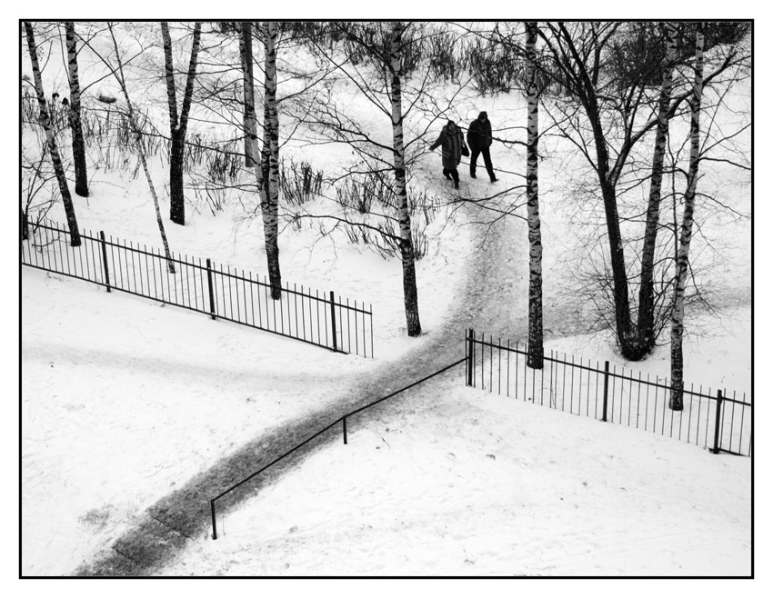"фото ""По тропинке меж березок..."" метки: черно-белые, жанр,"