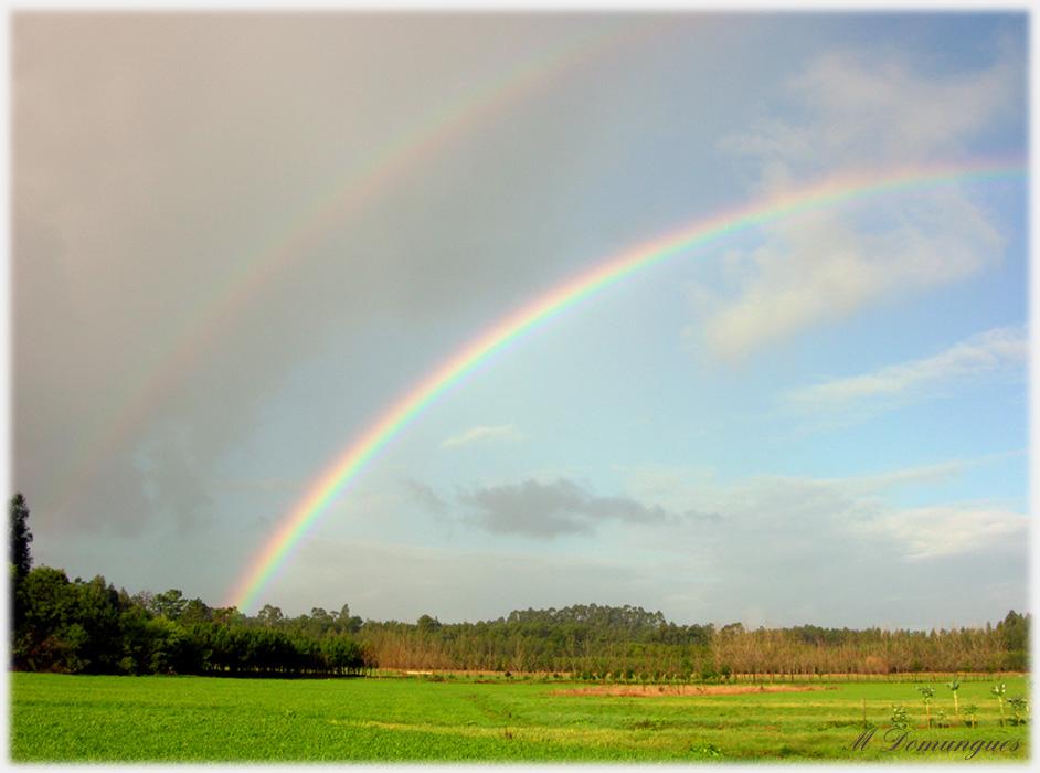 """фото """"Rainbow"""" метки: пейзаж, зима"""