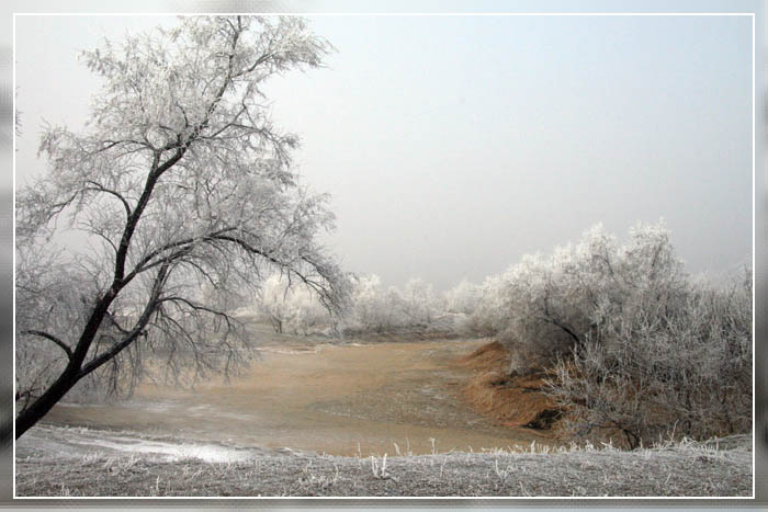 """фото """"Ушла вода..."""" метки: пейзаж, зима"""