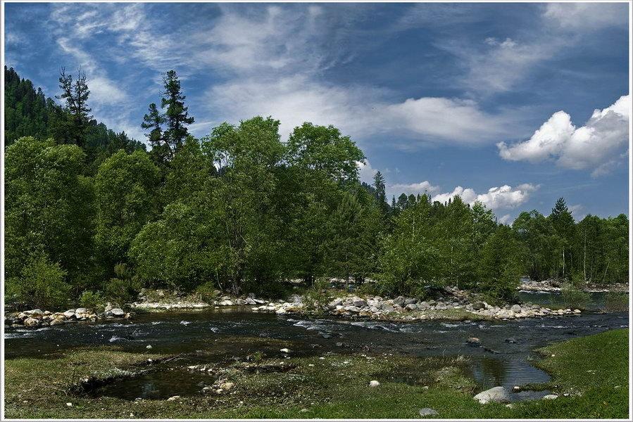 "фото ""р. Бия"" метки: пейзаж, путешествия, Азия, лес"