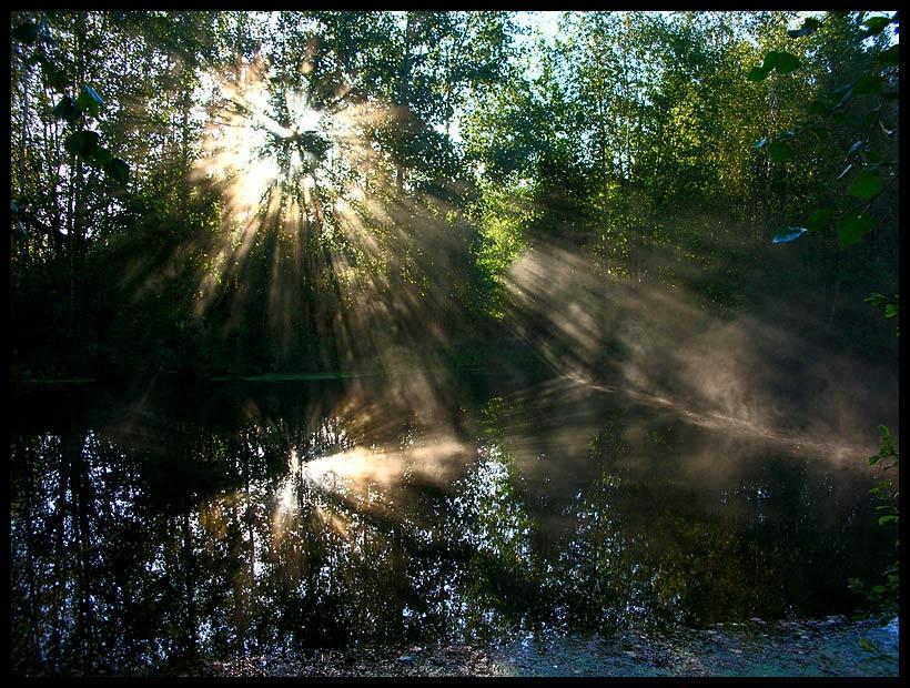 """фото """"Под перекрестным огнем"""" метки: пейзаж, закат, осень"""