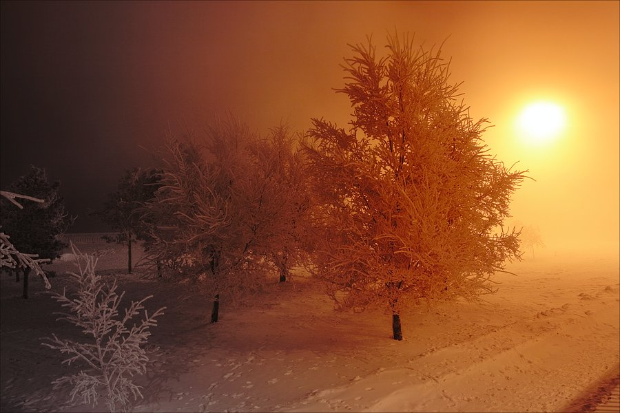 "photo ""* * *"" tags: landscape, winter"
