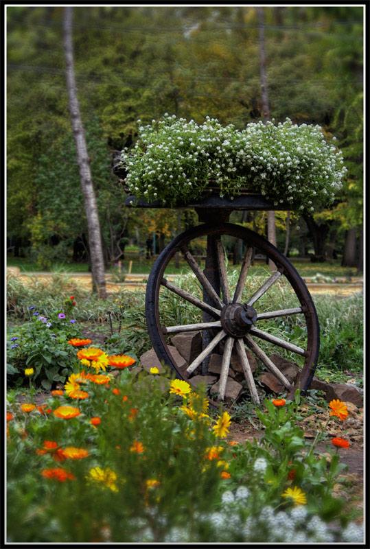 """фото """"Скоро осень"""" метки: ,"""
