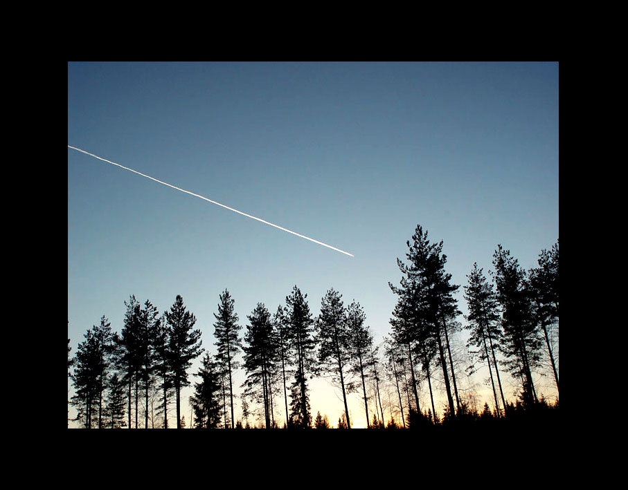 "фото ""Закат"" метки: пейзаж, лес"