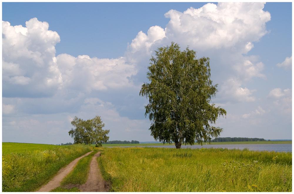 """фото """"Жарко"""" метки: пейзаж, лето, облака"""