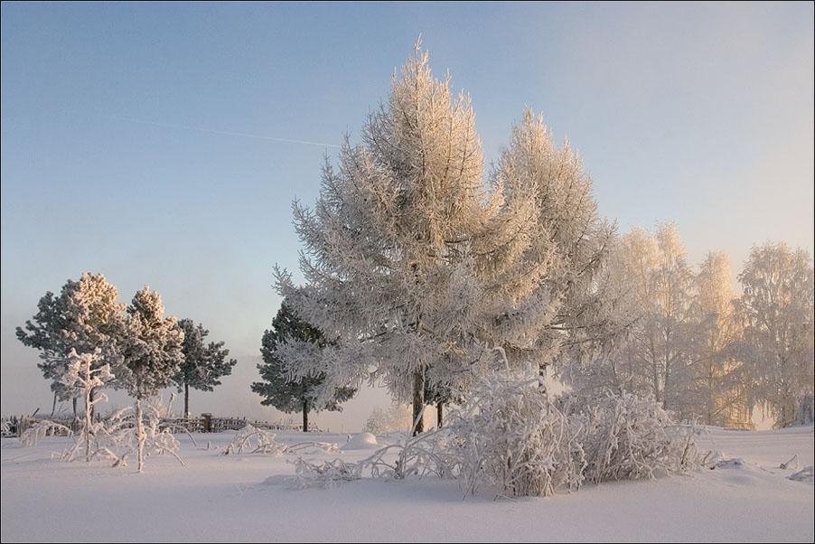 """фото """"Морозное утро"""" метки: пейзаж, зима"""