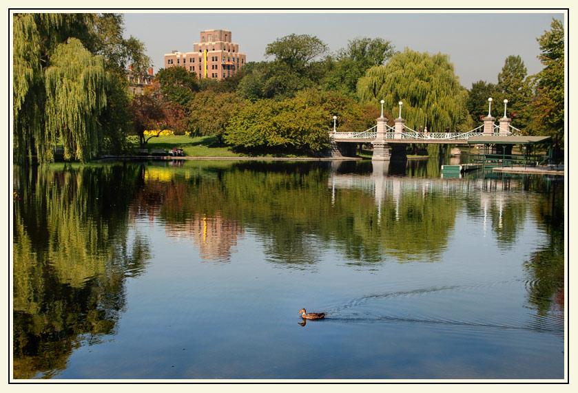 """фото """"Уточка.."""" метки: город, пейзаж, вода"""