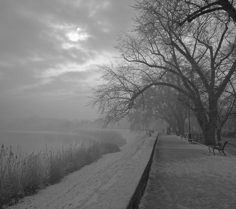 """фото """"Зимний туман"""" метки: пейзаж, зима"""