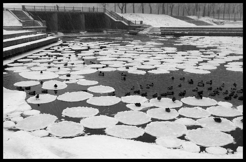 """фото """"Ледяной хоровод"""" метки: пейзаж, природа, вода"""