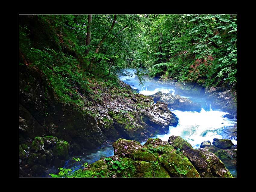 "photo ""Vintgar"" tags: landscape, travel, Europe, forest"