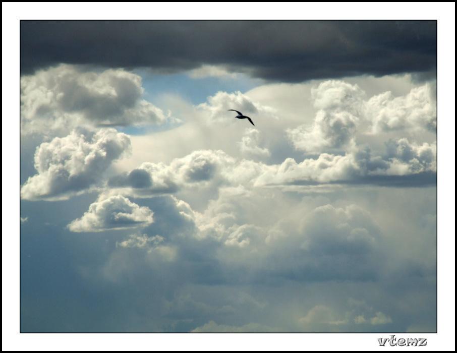 """фото """"Untitled"""" метки: пейзаж, облака"""