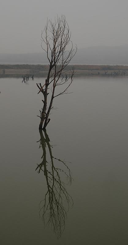 """фото """"..."""" метки: пейзаж, вода"""