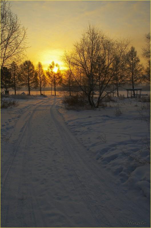 """фото """"Дорога к пляжу"""" метки: пейзаж, зима"""
