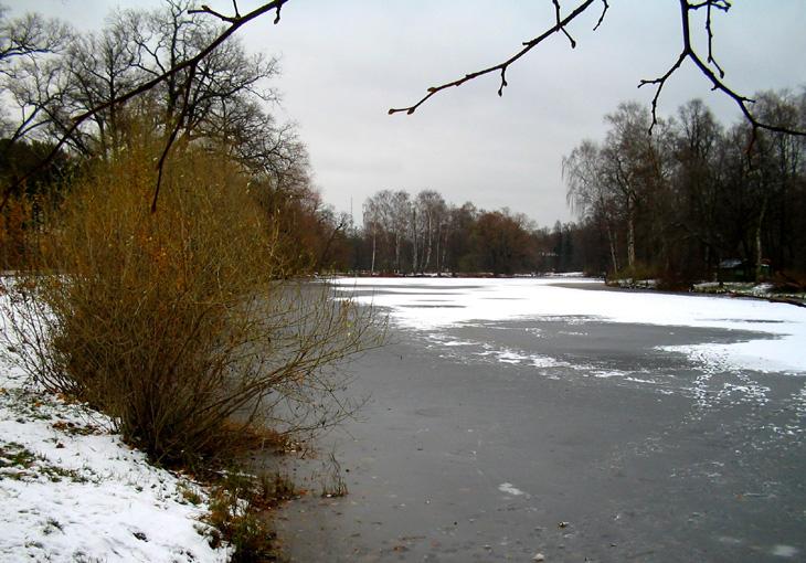 """фото """"Ноябрь"""" метки: пейзаж, вода, осень"""