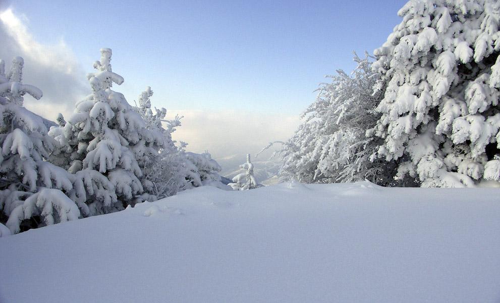 """фото """"***"""" метки: пейзаж, природа, зима"""