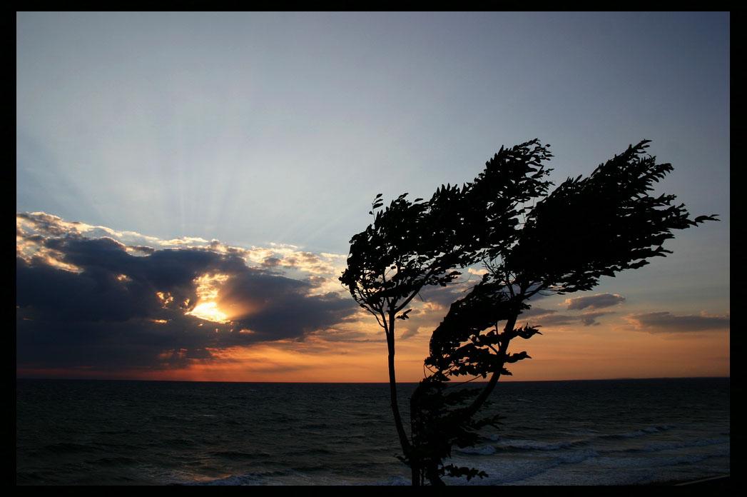 """фото """"Wind from the sea"""" метки: пейзаж, вода"""