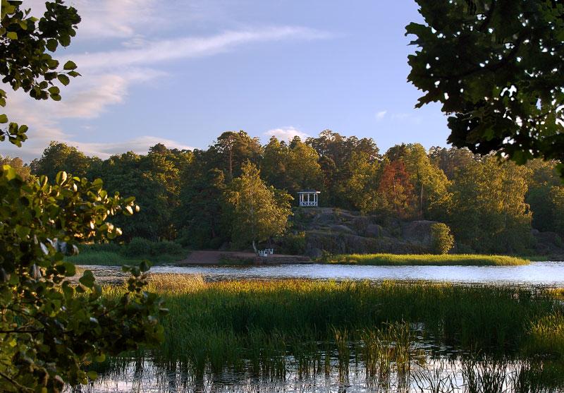 """фото """"В парке Монрепо. На закате ..."""" метки: пейзаж, лето"""