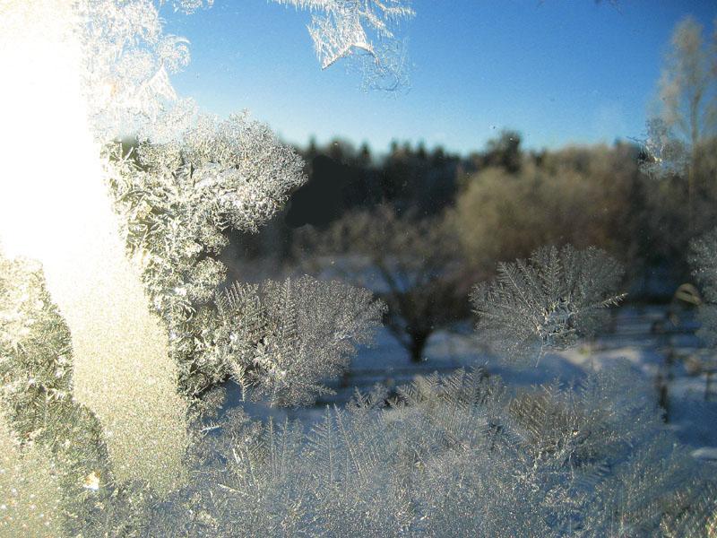 """фото """"Сквозь изящность зимы."""" метки: пейзаж, зима"""