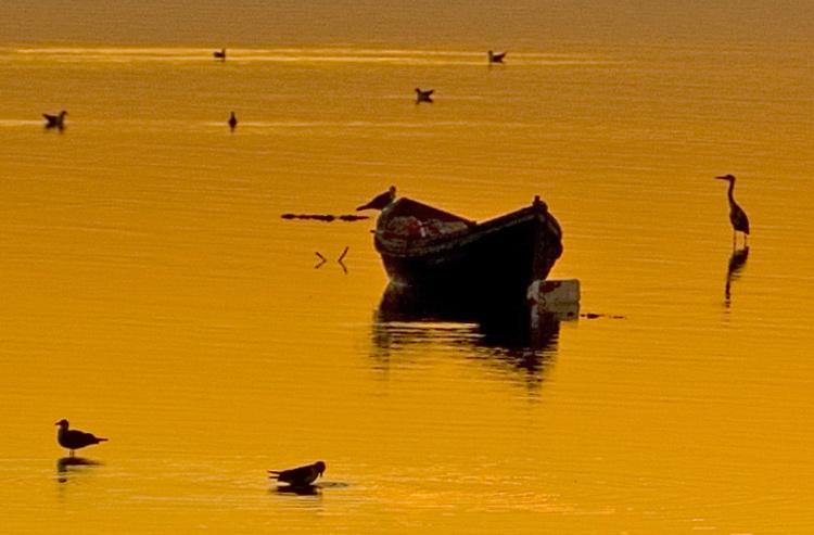 "фото ""SUNSET"" метки: пейзаж, вода, закат"