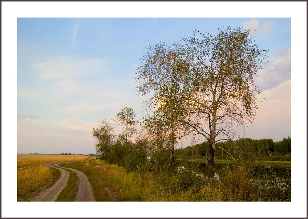 """фото """"Осиновый закат"""" метки: пейзаж, закат, осень"""