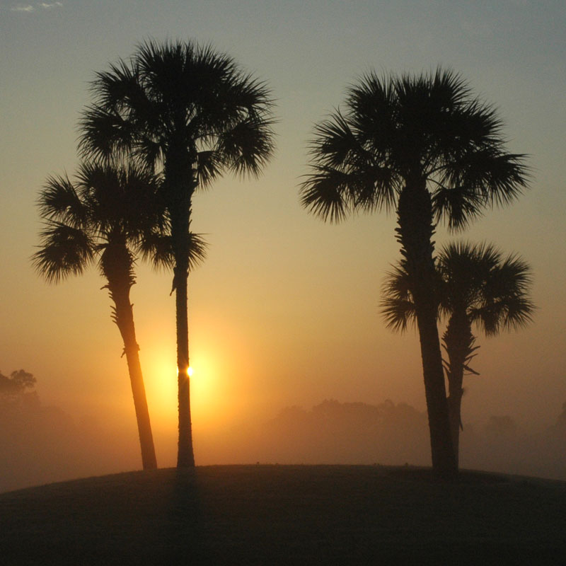 "photo ""good morning florida"" tags: landscape, travel, sunset"
