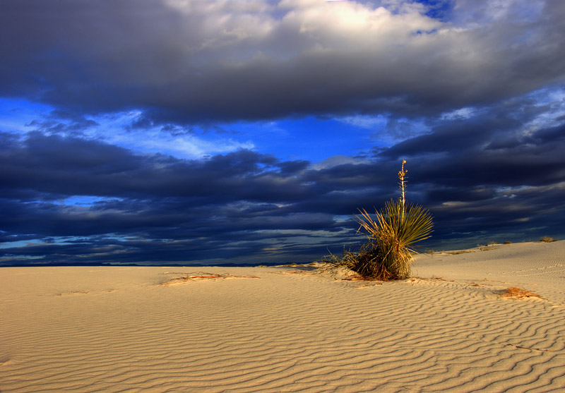 "фото ""Поза для атаки"" метки: пейзаж, путешествия, закат"