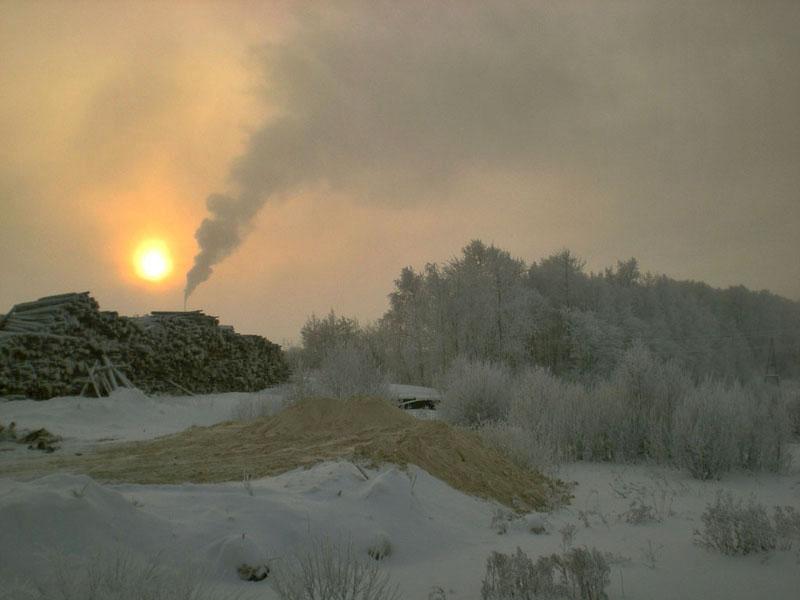 "фото ""на лесопилке"" метки: пейзаж, зима, лес"