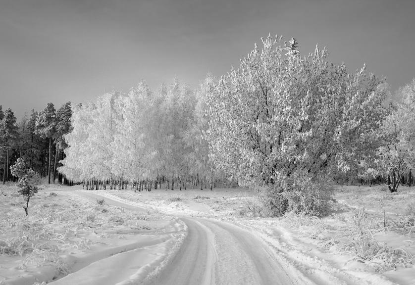 """фото """"Морозный поворот"""" метки: пейзаж, зима"""