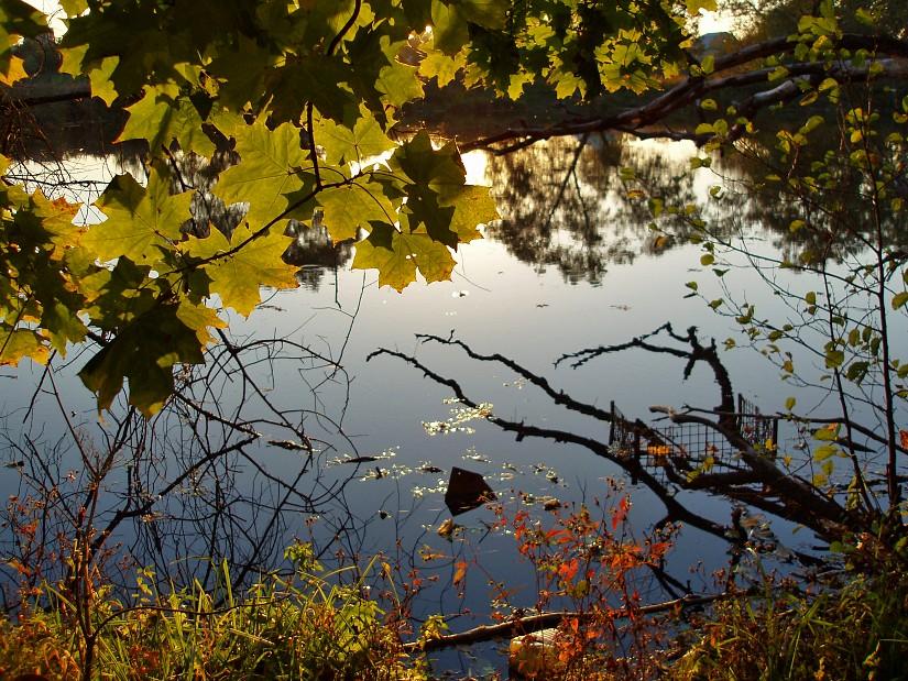 """фото """"Ищем Кукарямбу"""" метки: пейзаж, вода, осень"""