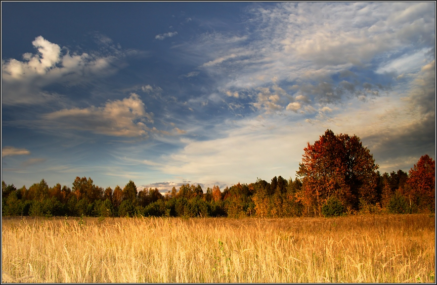 "photo ""near Zhukovka"" tags: landscape, clouds"