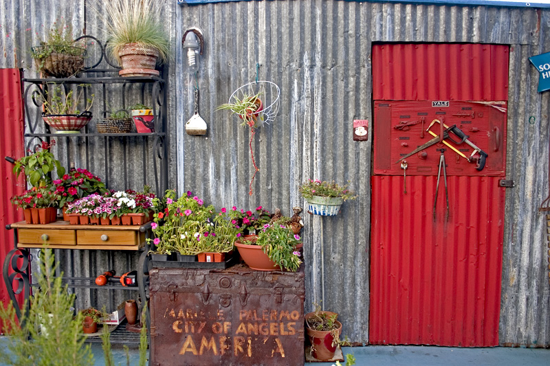 "фото ""The Red Door"" метки: природа, цветы"