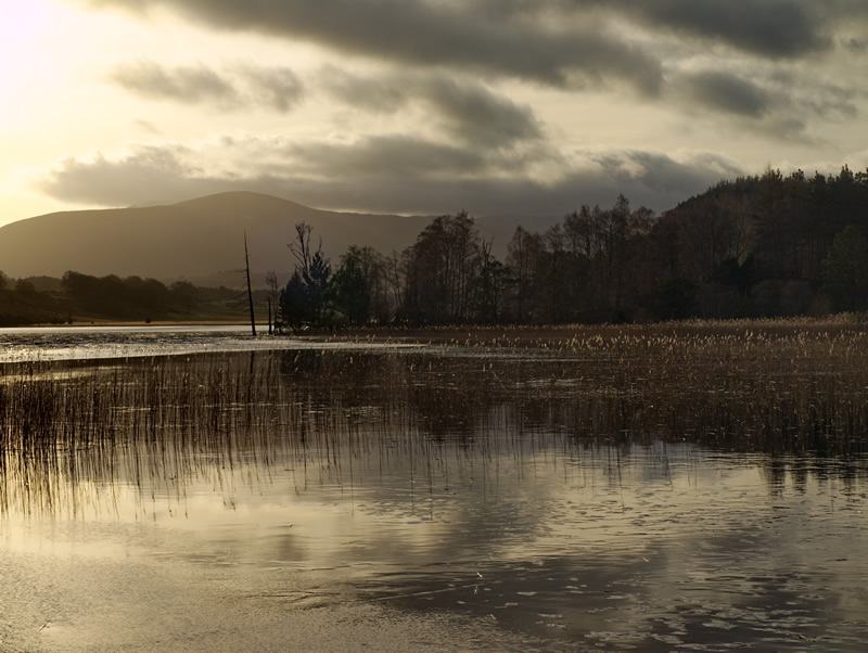 "photo ""Loch Pityoulish"" tags: landscape, water, winter"