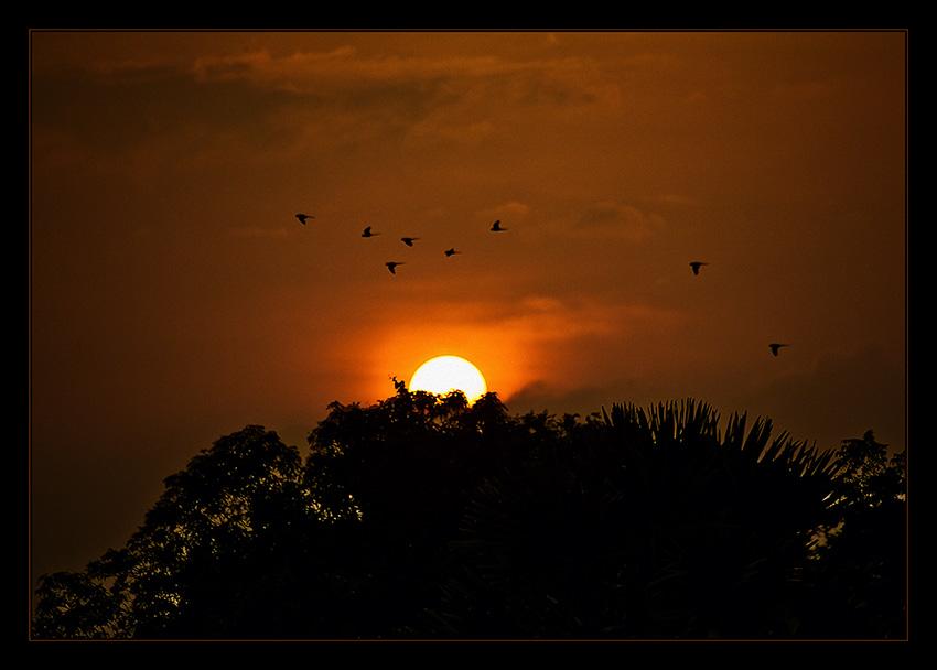 """фото """"Закат"""" метки: пейзаж, путешествия, Азия, закат"""