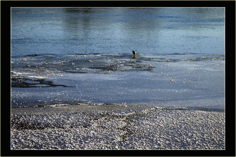 """фото """"На отмели"""" метки: пейзаж, вода"""