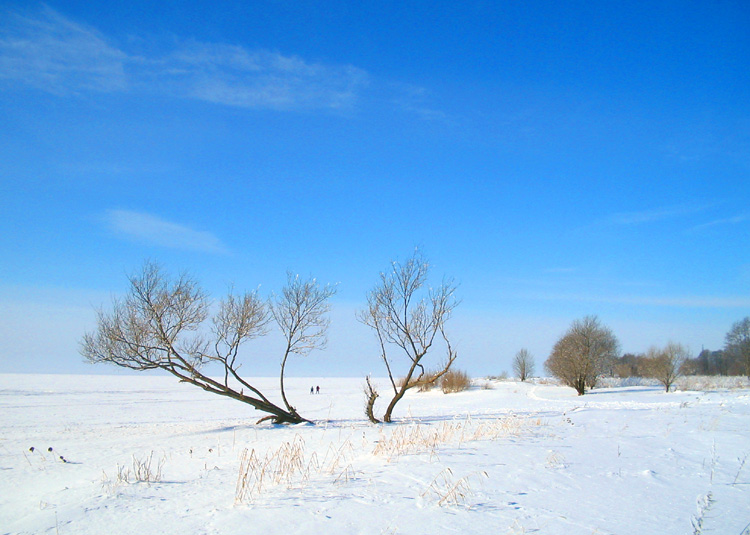 "photo ""Leaving for the Blue"" tags: landscape, winter"