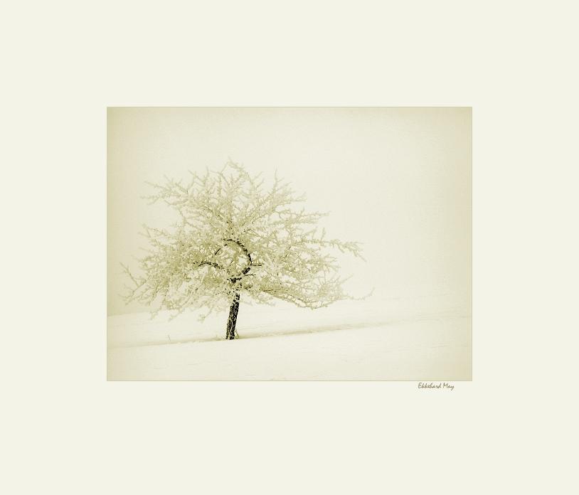 "фото ""time in absence..."" метки: пейзаж, зима"