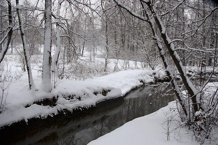 """фото """"Заснеженность."""" метки: пейзаж, зима"""