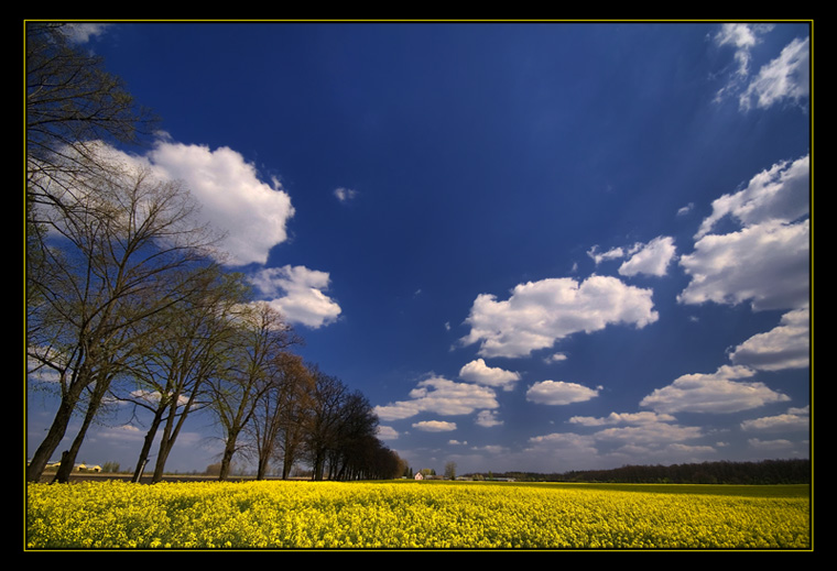 "photo ""remembering the spring..."" tags: landscape, clouds, spring"