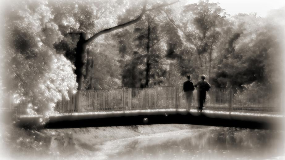 "photo ""Summer"" tags: landscape, summer"