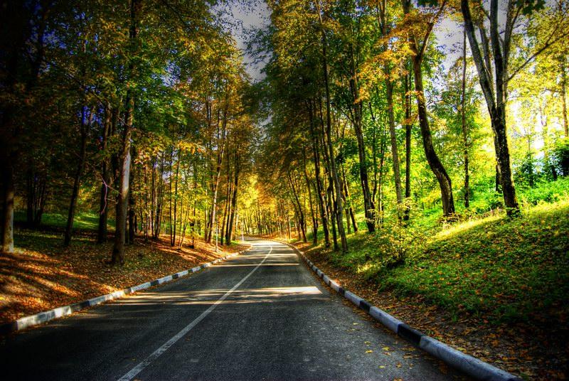 """фото """"дорога домой"""" метки: пейзаж, осень"""