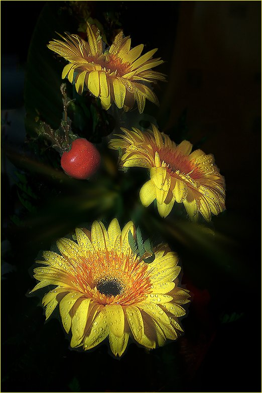 "photo ""Yellow Gerberas"" tags: nature, flowers"